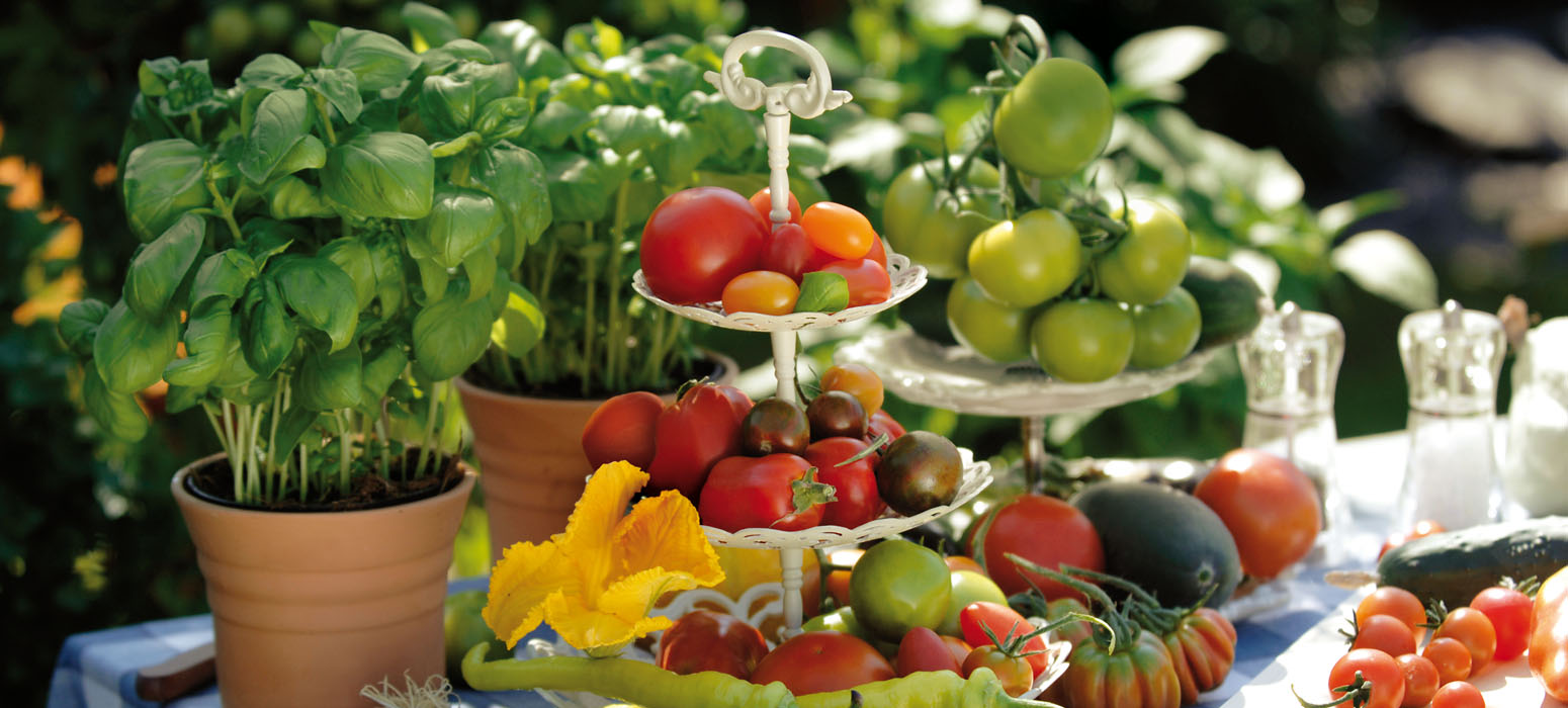 Gemüse-Sorten von Kientzler